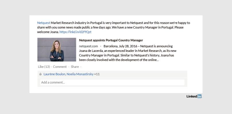 Netquest Perfil de Empresa en LinkedIn